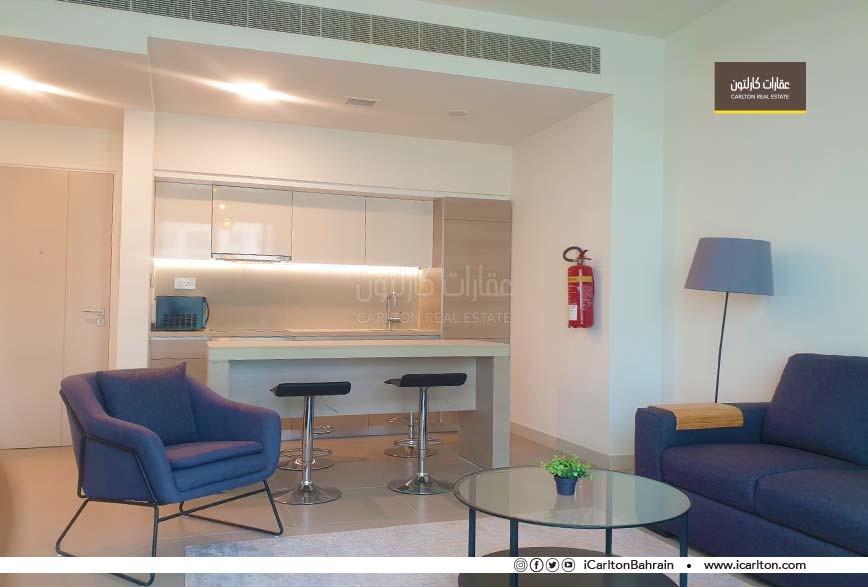 Fully Furnished Flat -1 Bedroom- For Sale