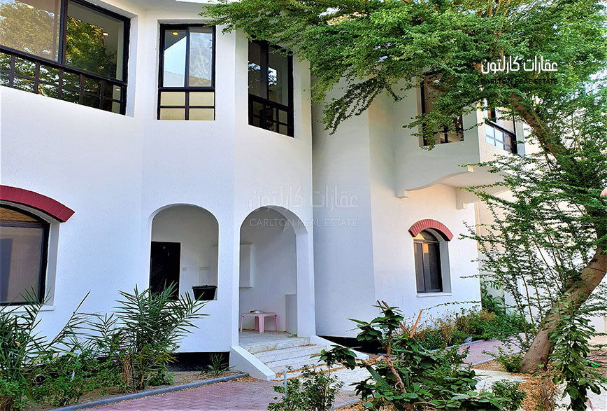 Large  /  Double storey / Family villa