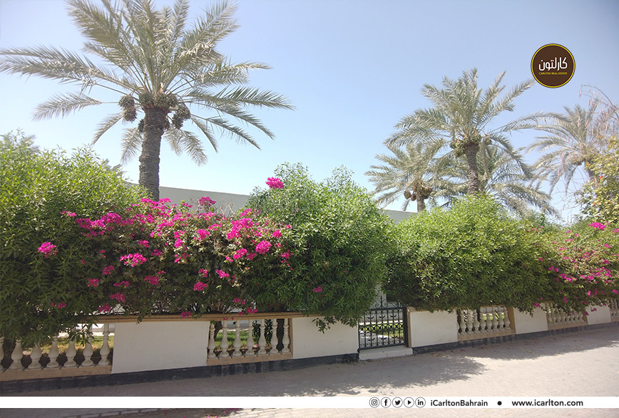 WARM HOUSE WITH LOVELY GARDEN IN JANUSAN